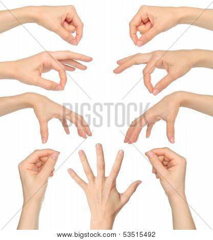 Collage of woman hands