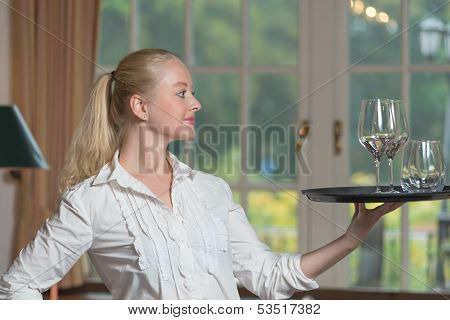 Elegant Beautiful Woman Serving Drinks