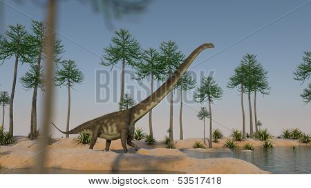 mamenchisaurus in araucaria grove