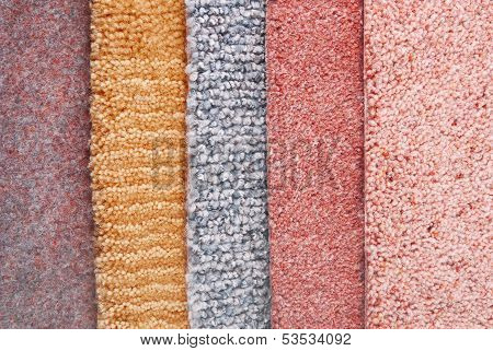 carpet choice for interior
