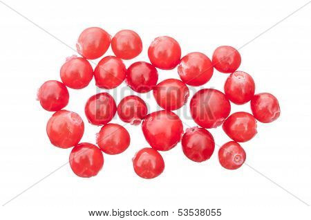 Red Huckleberries