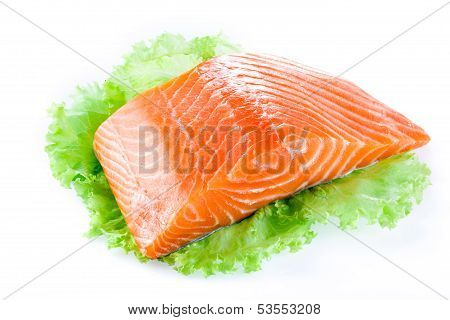 Salmon Fillet Isolated