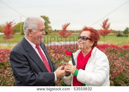 Romantic Senior Looking At Eachother With Love