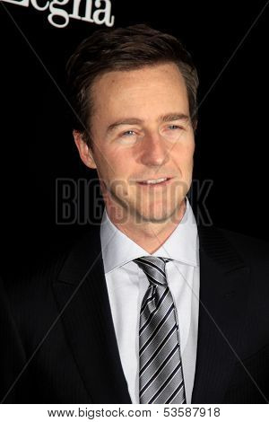 LOS ANGELES - NOV 7:  Ed Norton at the Ermenegildo Zegna Global Store Opening at Ermenegildo Zegna Boutique on November 7, 2013 in Beverly Hills, CA