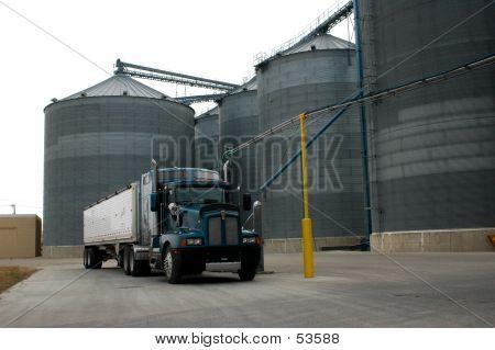 Hauling Grain
