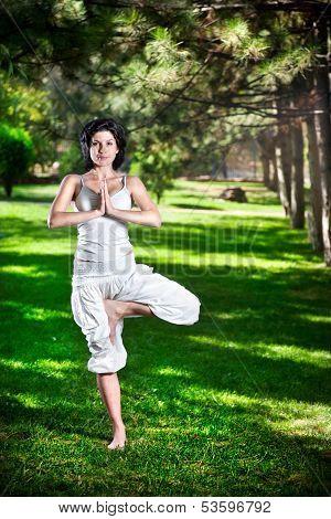 Yoga Tree Pose In Park