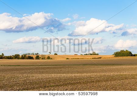 Monoculture Corn Fields Of Indiana