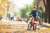 stock photo of pedal  - Happy boy with bicycle in the autumn park - JPG
