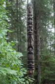 picture of tlingit  - Tall wooden cedar Tlingit totem pole in pine forest in Sitka Alaska - JPG