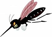 stock photo of gnats  - Vector illustration of Angry mosquito cartoon isolated on white background - JPG
