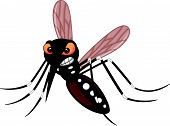 stock photo of gnat  - Vector illustration of Angry mosquito cartoon isolated on white background - JPG