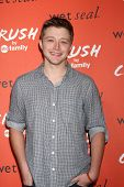 LOS ANGELES - NOV 5:  Sterling Knight at the CRUSH by ABC Family Clothing Line Launch at London Hote