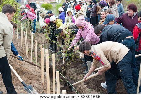 City Tree Planting