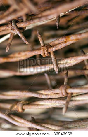 Rusty Barbed Wire Macro