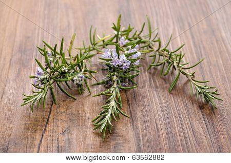 Spice Rosemary