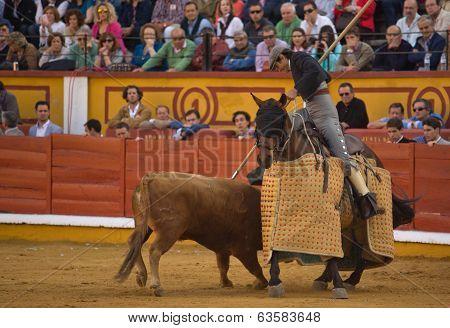 Pushing The Horse
