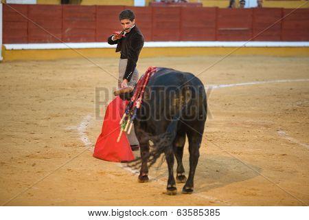 Torero With Estoque