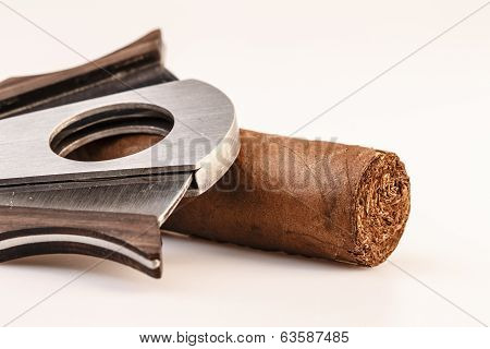 Cigar And Cutter On A White Background