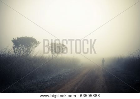Alone Man Walking In The Fog