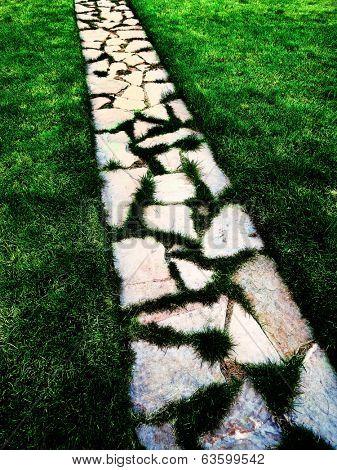Detail of cobblestone walking foot path with lush green grass garden