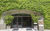 Постер, плакат: Domain Chandon Winery in Napa Valley