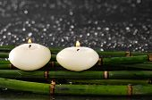 Two candle with green bamboo grove on wet background