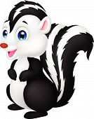 image of skunk  - Vector illustration of Cute skunk cartoon isolated on white background - JPG