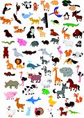 stock photo of kangaroo  - Vector illustration of Big animal cartoon set - JPG