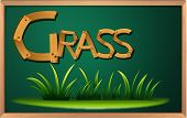 Illustration of a blackboard with grass