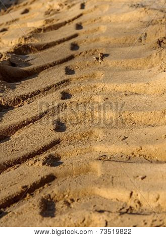 trace the sand