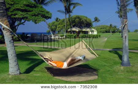 Asleep Between Two Palms