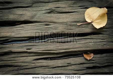 Wet Wood Table Plank With Leaves Background
