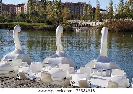 pedal swan