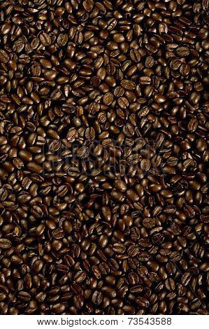 Coffee Seeds Background