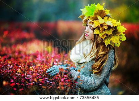 beautiful young woman in the autumn park