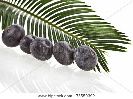 palm leaves with fresh fruits isolated on white background.