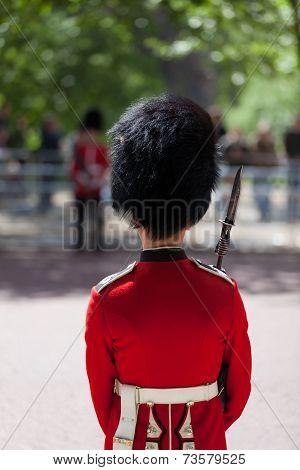 Royal Guard With Bearskin