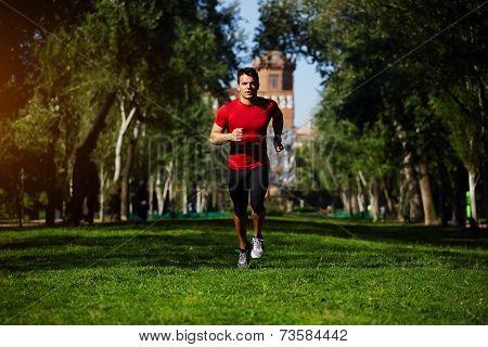 Athletic runner training in beautiful green park at sunny evening, fitness man running on grass