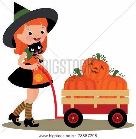 Witch Halloween Carries A Wheelbarrow Full Of Pumpkins