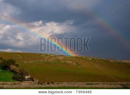 Rainbow Among The Clouds Above The Pasture