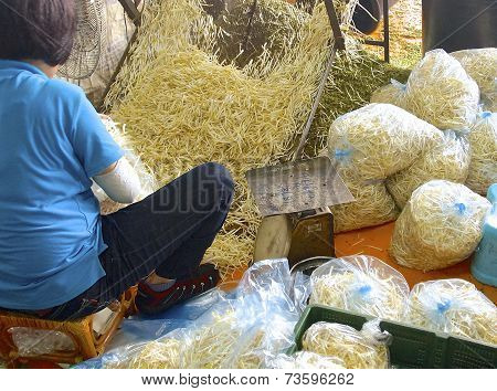 The working woman packing bean sprouts