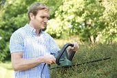 stock photo of electric trimmer  - Man Cutting Garden Hedge With Electric Trimmer - JPG