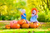 stock photo of country girl  - Happy children at pumpkin patch during Halloween little girl in a blue dress boots and cowboy hat and baby boy having fun together trick or treating on a sunny autumn day