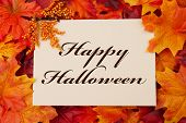 stock photo of happy halloween  - A Happy Halloween card A beige card with words Happy Halloween over red and orange maple leaf background - JPG