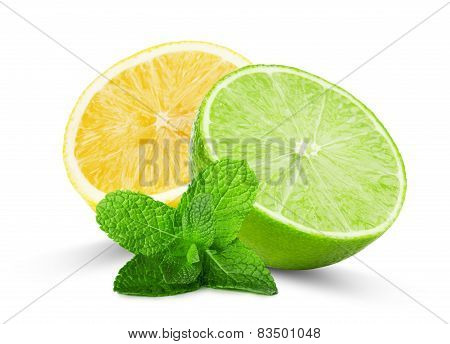 Half Of Lime And Lemon With Mint Leaves Isolated On The White Background