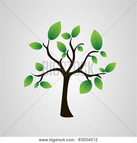Tree Of Leaves