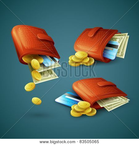 Purse with money, credit cards and coins. Vector illustration