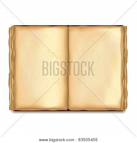 Old Opened Book Isolated On White Vector