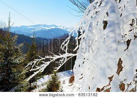 The View From A Slope Of Bukovel Ski Resort, Ukraine
