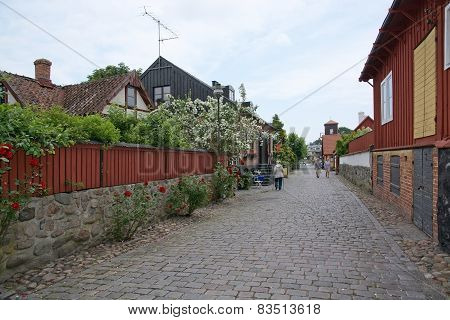 Idyllic street with roses and cobble stone